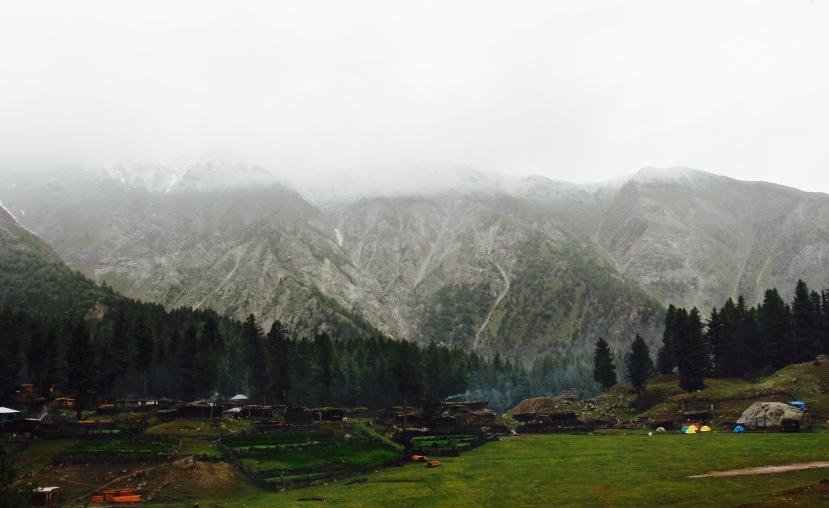 Fairy Meadows, Gilgit Baltistan, Pakistan 3